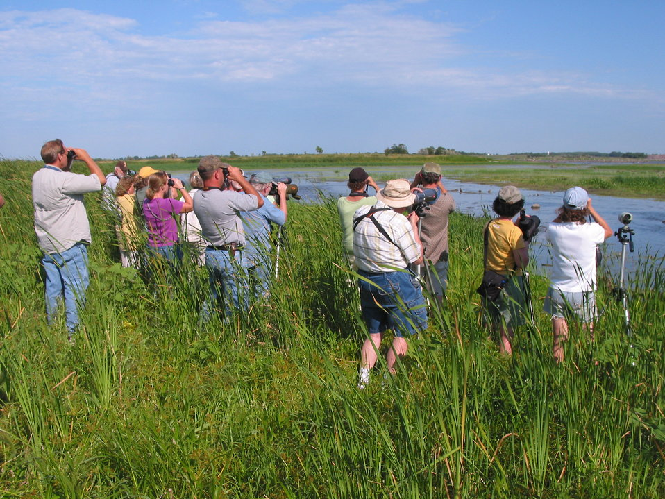 Group of people birding