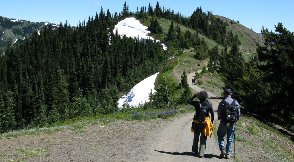 Endurance Hiking Training Program