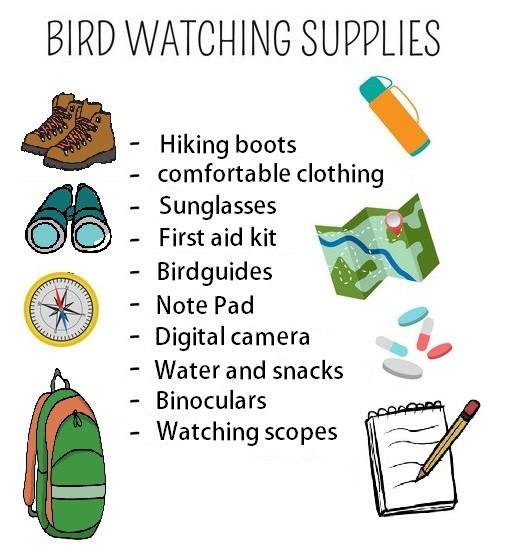 Bird watching supplies
