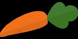 Orange healthy carrot