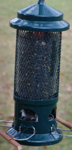 Squirrel Buster Standard​ edition bird feeder
