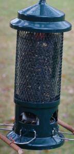 Squirrel Buster Standard edition bird feeder