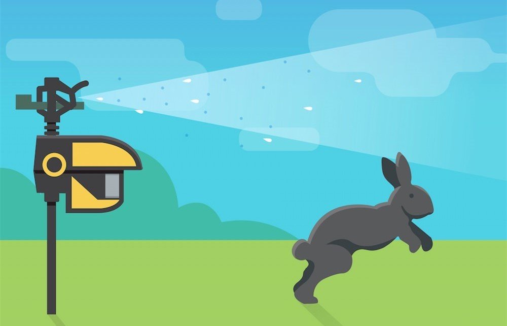 keeping rabbits away from your garden