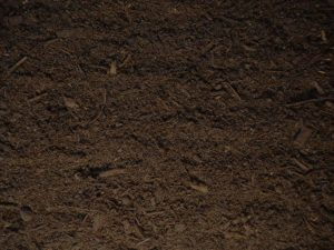 Topsoil vs Garden Soil vs Potting Soil