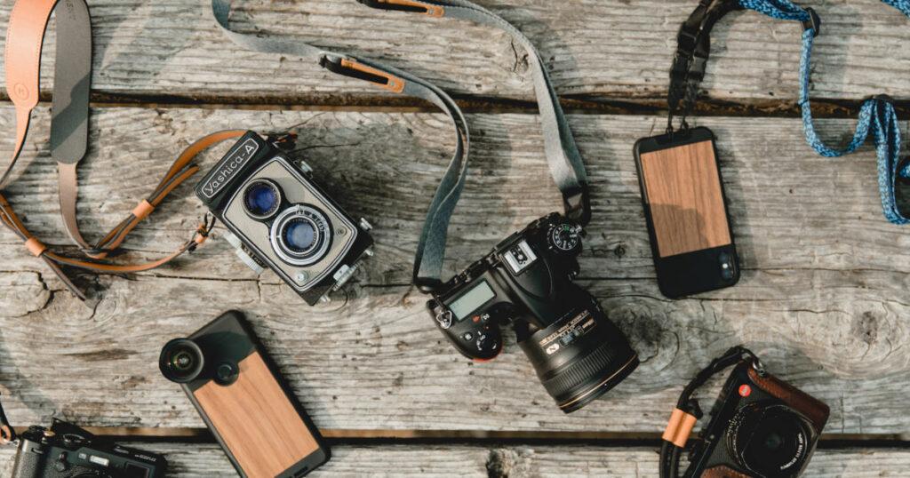 Beginner Camera For Bird Photography
